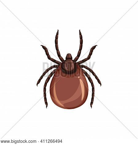 Tick Insect Icon, Pest Control, Parasites Extermination And Disinsection Service, Isolated Vector. T