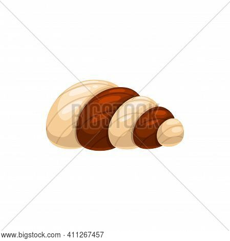 Chocolate Candy Vector Icon. Sweet Cocoa Dessert In Shape Of Conch Made Of White, Dark Bitter Or Mil