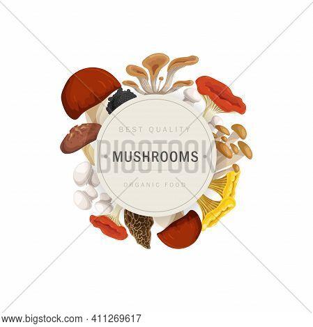 Cartoon Mushrooms Wreath Design Template. Porcini, Oyster Mushrooms, Shiitake, Enotake, Truffle, Cha