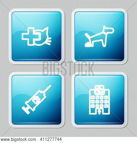 Set Line Veterinary Clinic, Dog Pooping, Syringe With Pet Vaccine And Medicine Hospital Icon. Vector