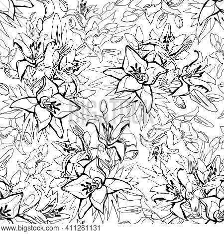 Outline Seamless Pattern With Lily Flowers Drawn By Hand On White Background. Floral Sketch Of Conto