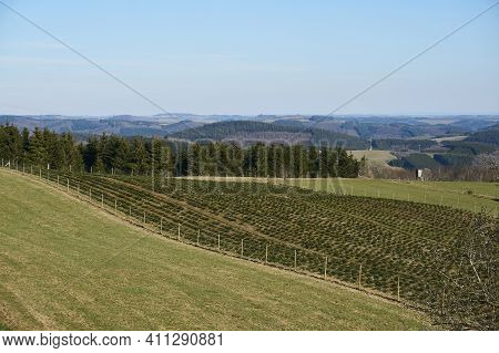 Landscape Panorama In Spring In Rhineland-palatinate, Germany.
