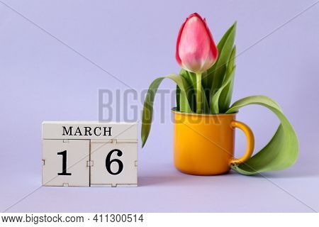 Calendar For March 16: Cubes With The Number 16, The Name Of The Month March In English, A Scarlet T