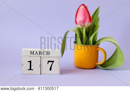 Calendar For March 17: Cubes With The Number 17, The Name Of The Month March In English, A Scarlet T