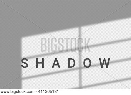 Shadow Light Overlay Window Wall Scene Mockup. Shadow Transparent Background