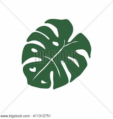 Monstera Leaf On White Background. Monstera Tropical Leaves (swiss Plant). Tropical Jungle Monstera