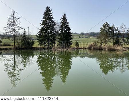 Gizlen Pond (gizlen Weiher) Next To The Natural Protection Zone Aargau Reuss River Plain (naturschut