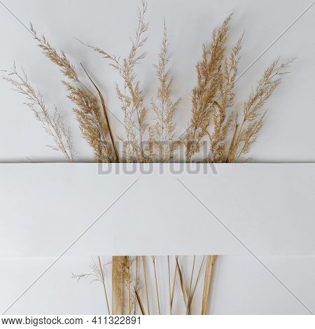 White Empty Frame And Bouquet Of Dry Field Spikelets Flat Lay. Square Layout With Place For Text. Au