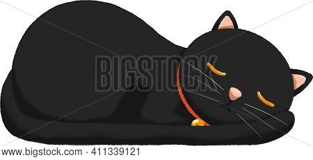 Black Cat Sleeping With Red Collar And Golden Bell