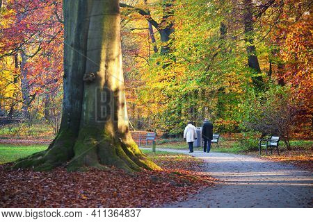Elderly Couple Walking Throiugh The Alley In The Nachtegalen Park. Close-up View Of The Tall Ancient