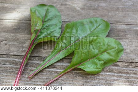 Mangold Leaves On Wooden Background. A Fresh Mix Of Green And Red Leaves, Ingredients For The Salad.