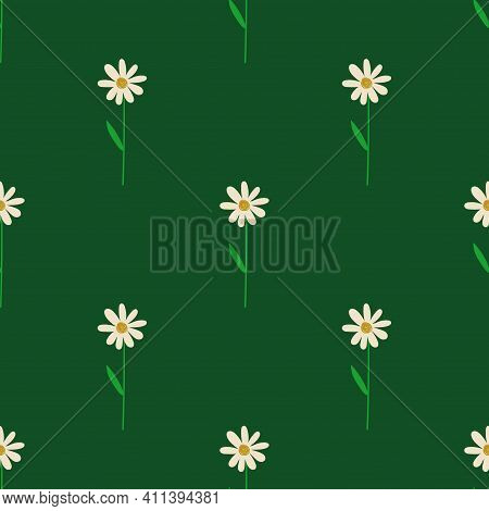 Floral Seamless Pattern. Rustic Wildflowers Wallpaper With Chamomile On A Deep Green Background.