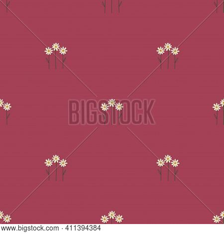 Floral Seamless Pattern. Rustic Wildflowers Wallpaper With Chamomile On A Deep Pink Background.