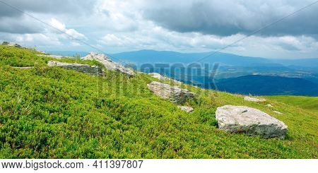 Rock Among The Grass On The Mountain Meadow. Beautiful Green Nature Scenery In Summer. View In To Th