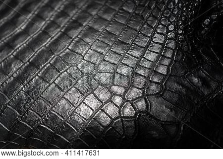 Close Up Of Black Crocodile,alligator Belly Skin Texture Use For Wallpaper Background.luxury Design