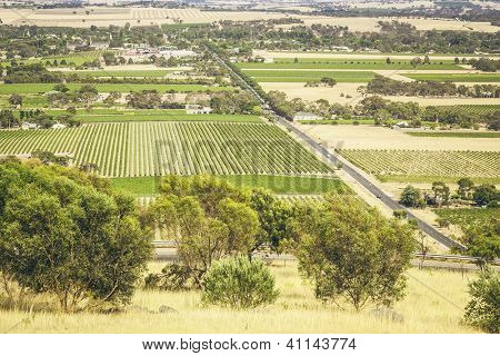 An image of the Barossa Valley landscape in Australia