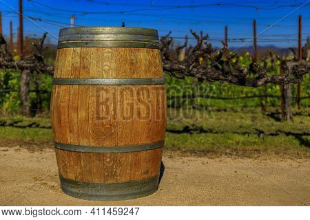 Wine Barrel And Rows Of Grape Vines With Yellow Mustard Flowers Blooming Between The Vines At A Vine
