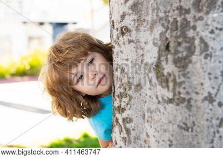 Little Kid Hide By Tree. Hide And Seek. Peekaboo