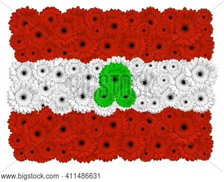 Lebanese Flag Made Of Gerbera Flowers, Isolated On White