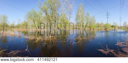 Flooded Low Shore Of River With Trees And Shrubs Standing In The Water And Overhead Power Lines Over