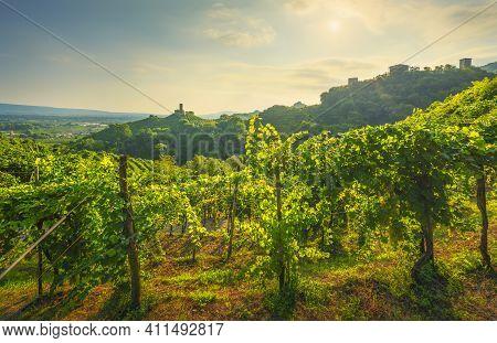 Prosecco Hills, Vineyards And San Lorenzo Church And Credazzo Towers. Unesco Site. Farra Di Soligo.