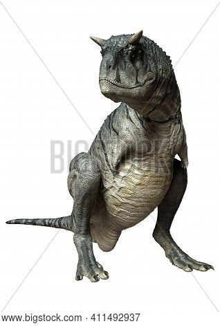 3D Rendering Carnotaurus Sastrei Dinosur On White