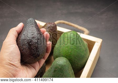 Close-up Of Hand Holding An Avocado Organic With Avocados Are Placed In A Wooden Crate On A Dark Gra