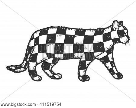 Cat Color Checkerboard. Sketch Scratch Board Imitation. Black And White.