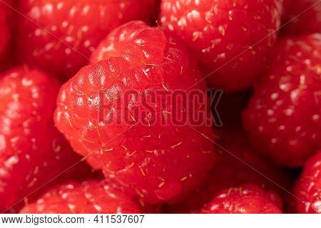 Delicious Ripe Red Raspberries. Juicy Raspberries. Healthy Raspberries. Closeup Of A Raspberry.