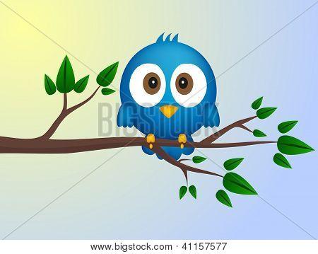 Blue Bird Sitting On Twig