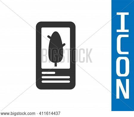 Grey Tarot Cards Icon Isolated On White Background. Magic Occult Set Of Tarot Cards. Vector