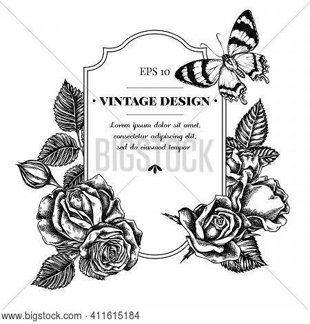 Badge Design With Black And White Alcides Agathyrsus, Roses Stock Illustration