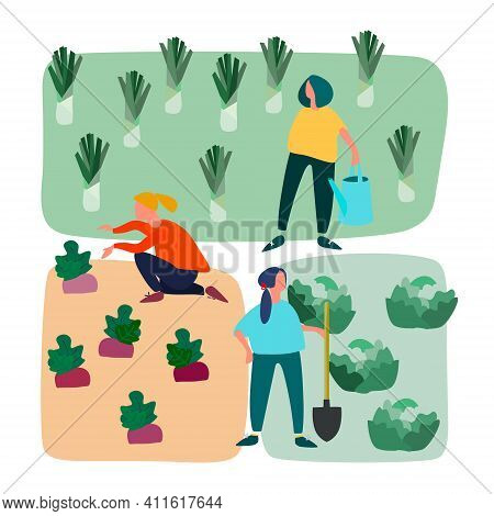 Men And Women Doing Agricultural Works On Vegetable Patch. Vector Flat Illustration. Gardening Conce