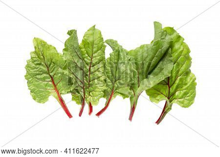 Fresh Chard Salad Leaves Isolated Over White
