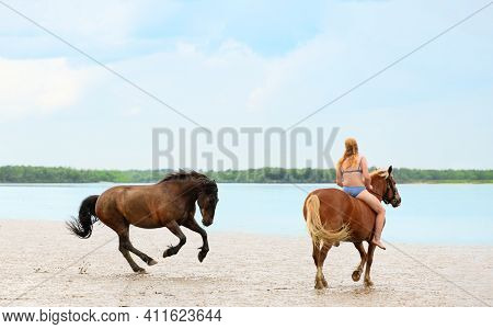Caucasian Woman In Bathing Suit Is Riding On Horseback On Beach And Her Another Free Horse Is Runnin