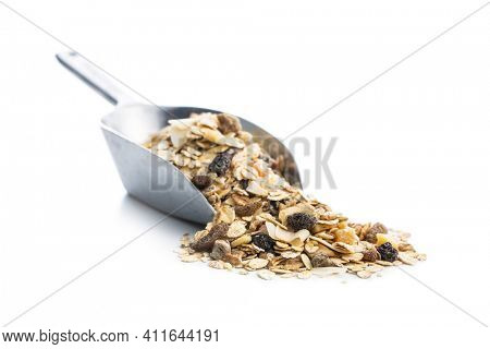 Beakfast cereals in scoop. Healthy muesli with oat flakes, nuts and raisins isolated on white background.
