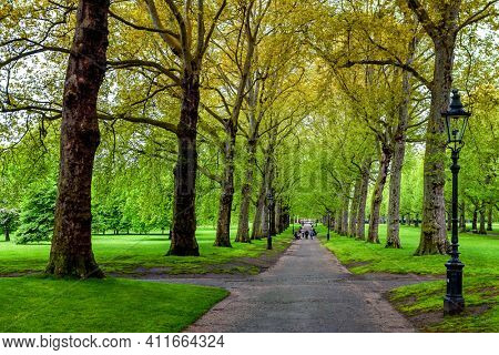 Alley with trees in park London