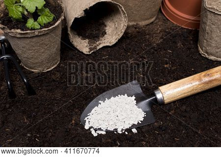 Mineral Fertilizers On The Spatula On The Background Of Garden Soil And Cups For Seedlings. The Conc