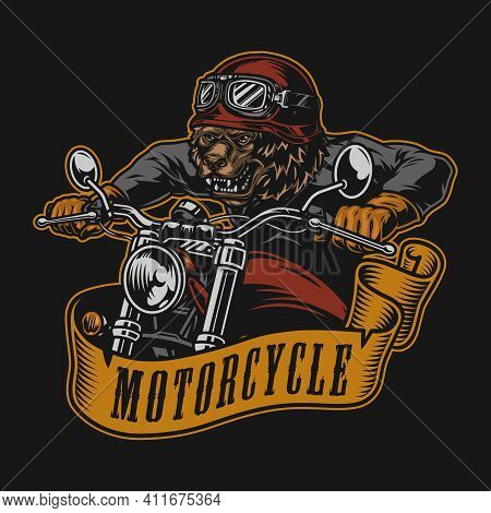 Motorcycle Colorful Vintage Logotype With Angry Bear Motorcyclist In Helmet Goggles Jacket And Glove