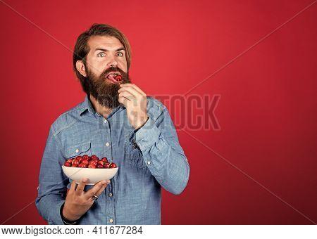 Cherry Season. Man Eat Organic Berries. Harvesting Cherries In Summer. Ripe Cherries In Pot. Delicio