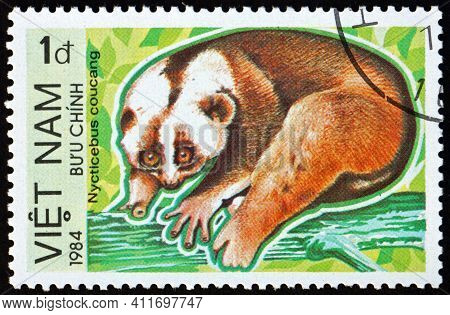 Vietnam - Circa 1984: A Stamp Printed In Vietnam Shows Greater Slow Loris, Nycticebus Coucang, Is A
