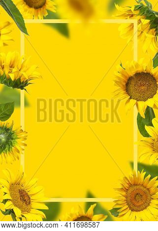 Frame Made Of Flying Yellow Sunflowers, Green Leaves On Yellow Background Flat Lay. Beautiful Floral