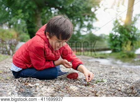 Happy Kid Sitting On Pebbles With Blurry Green Natural Background, Chid Playing With Wild Grass And
