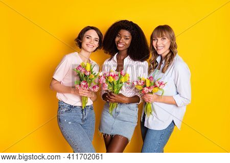 Portrait Of Three Attractive Cheerful Girls Holding In Hands Tulips Festal Occasion Isolated Over Br