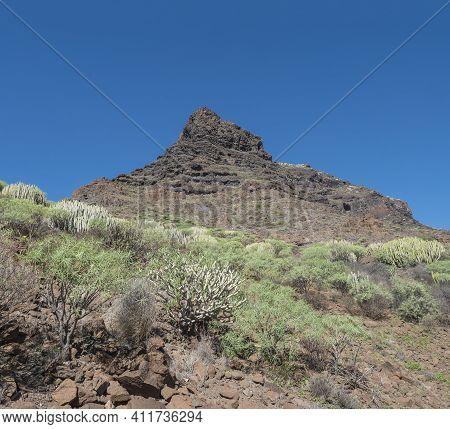 View Of Rocky Mountain Peak At Barranco De Guigui Grande. Arid Subtropical Landscape Of Ravine With