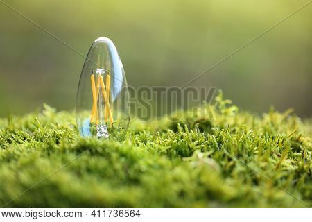 Energy Of Nature. Alternative Energy Sources Concept.concept Idea Clean Energy In Nature.energy Savi