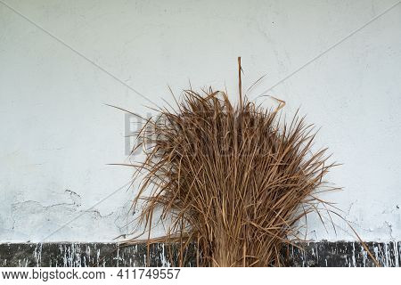 Sheaf Of Straw On White Wall Background.
