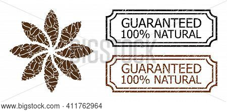 Mosaic Abstract Flower Constructed From Coffee Grain, And Grunge Guaranteed 100 Percents Natural Rec