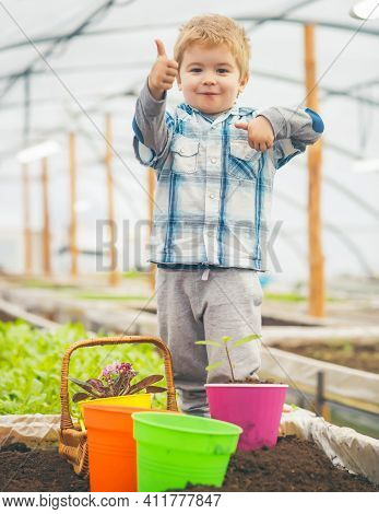 Kid Child In Greenhouse. Garden Green Houses And Garden Greenhouse Family Kits
