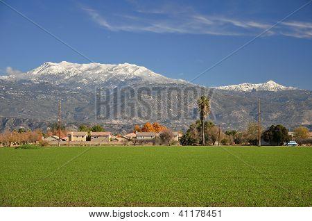 Snow on Mt. San Jacinto